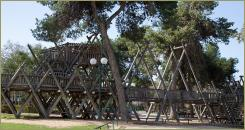Wooden construction on the background of man-made forest